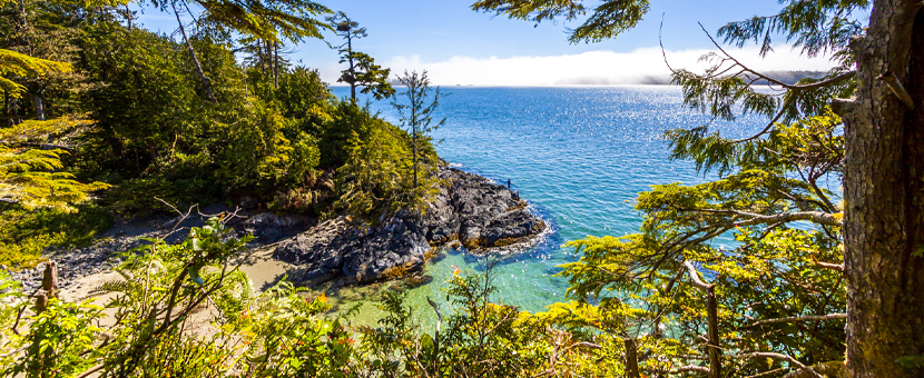 Canada tours Vancouver Island 8 day tour