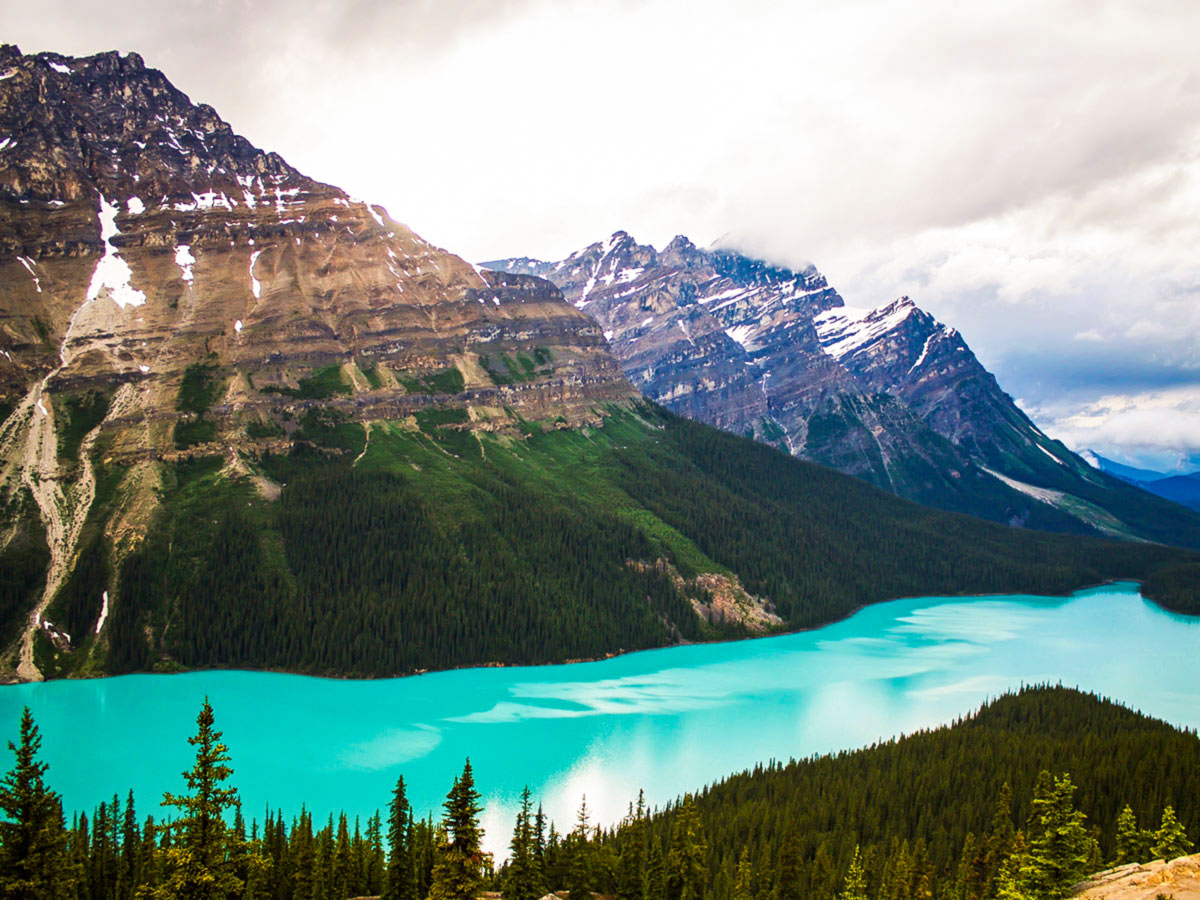12 day guided camping and hiking adventure tour includes visiting the Peyto Lake near B