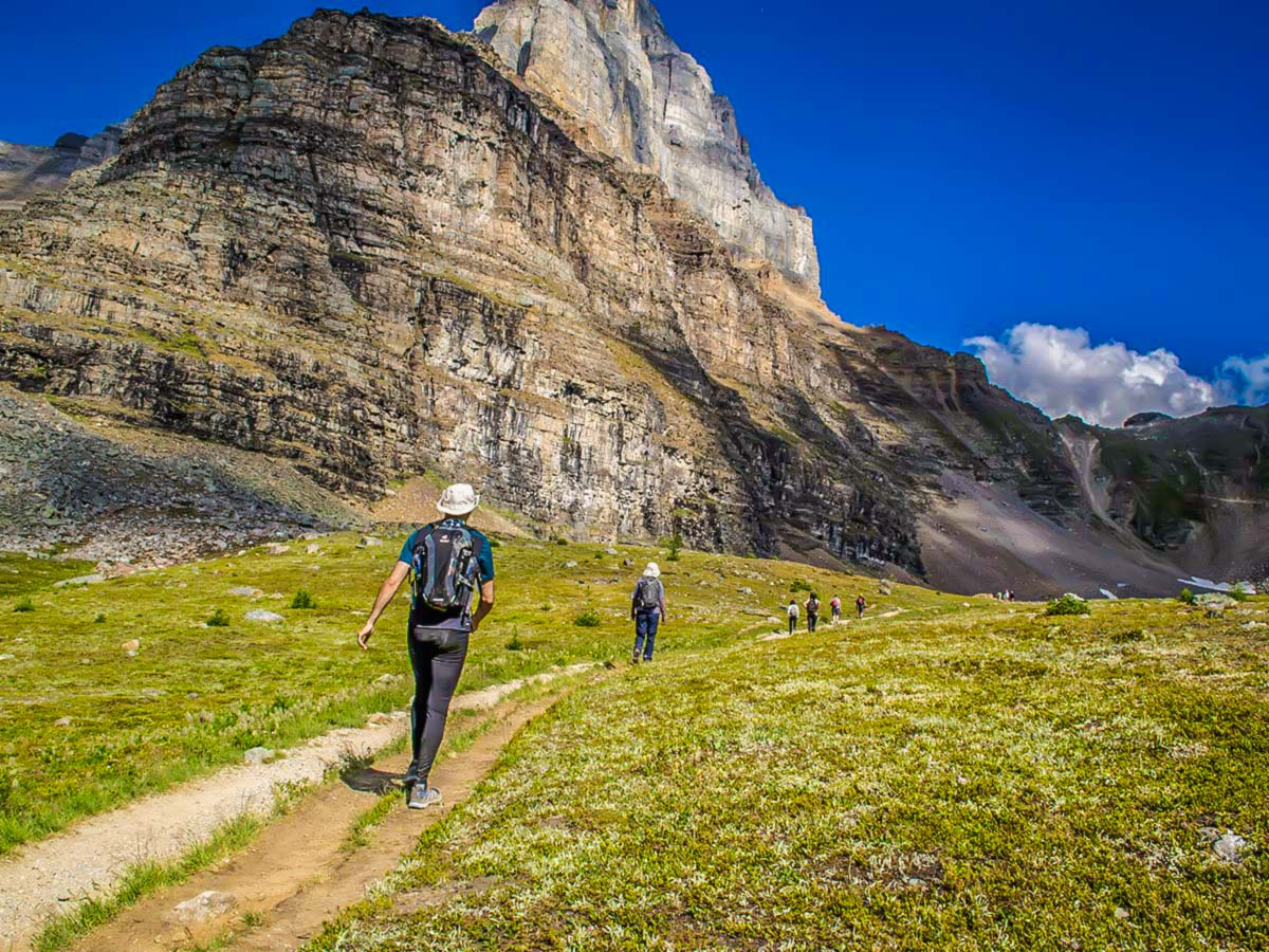 Group of hikers approaching the Sentinel Pass on a guided camping trip in the Rocky Mountains