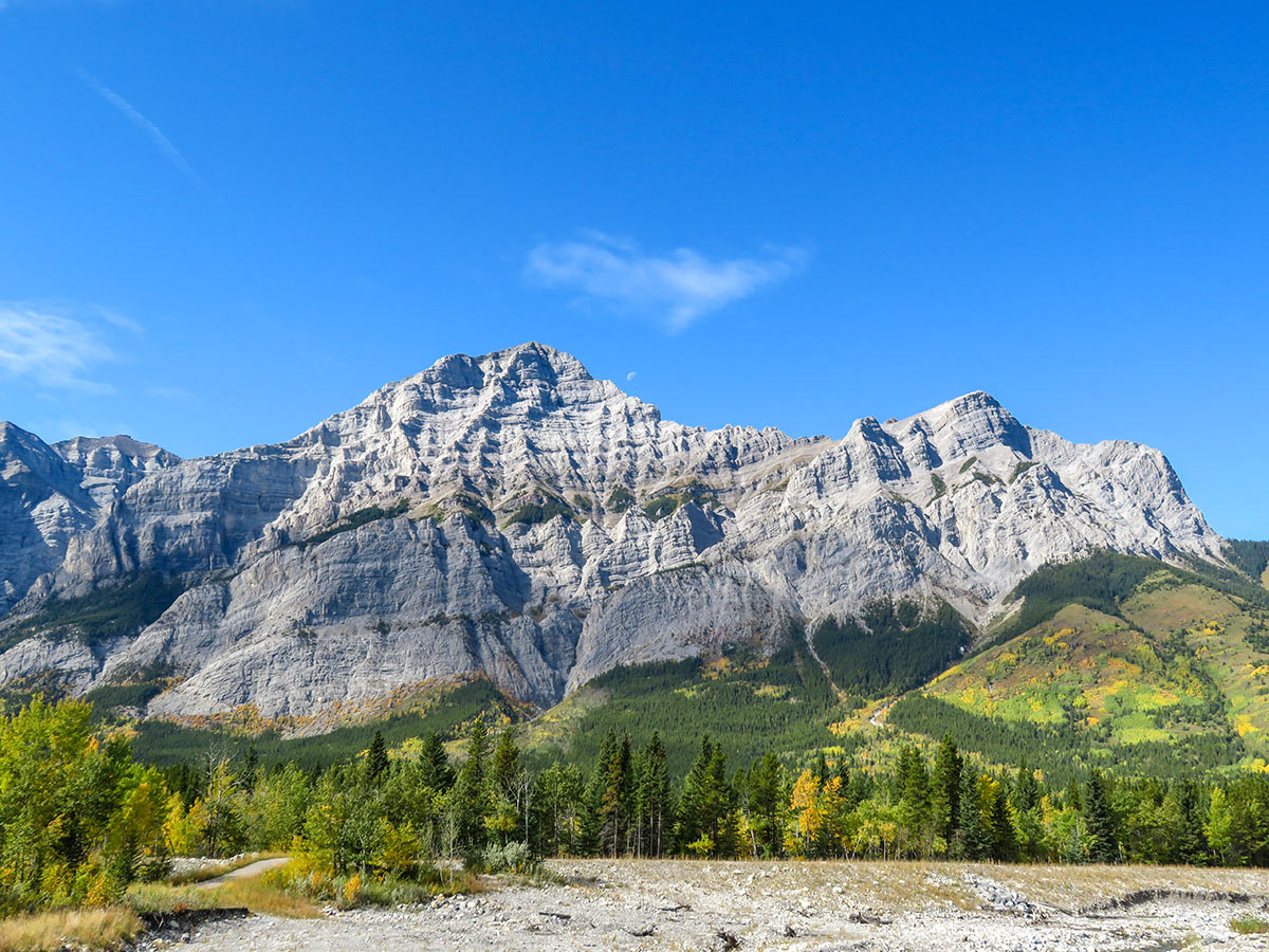 Beautiful views of the Canadian Rocky Mountains seen on a guided tour