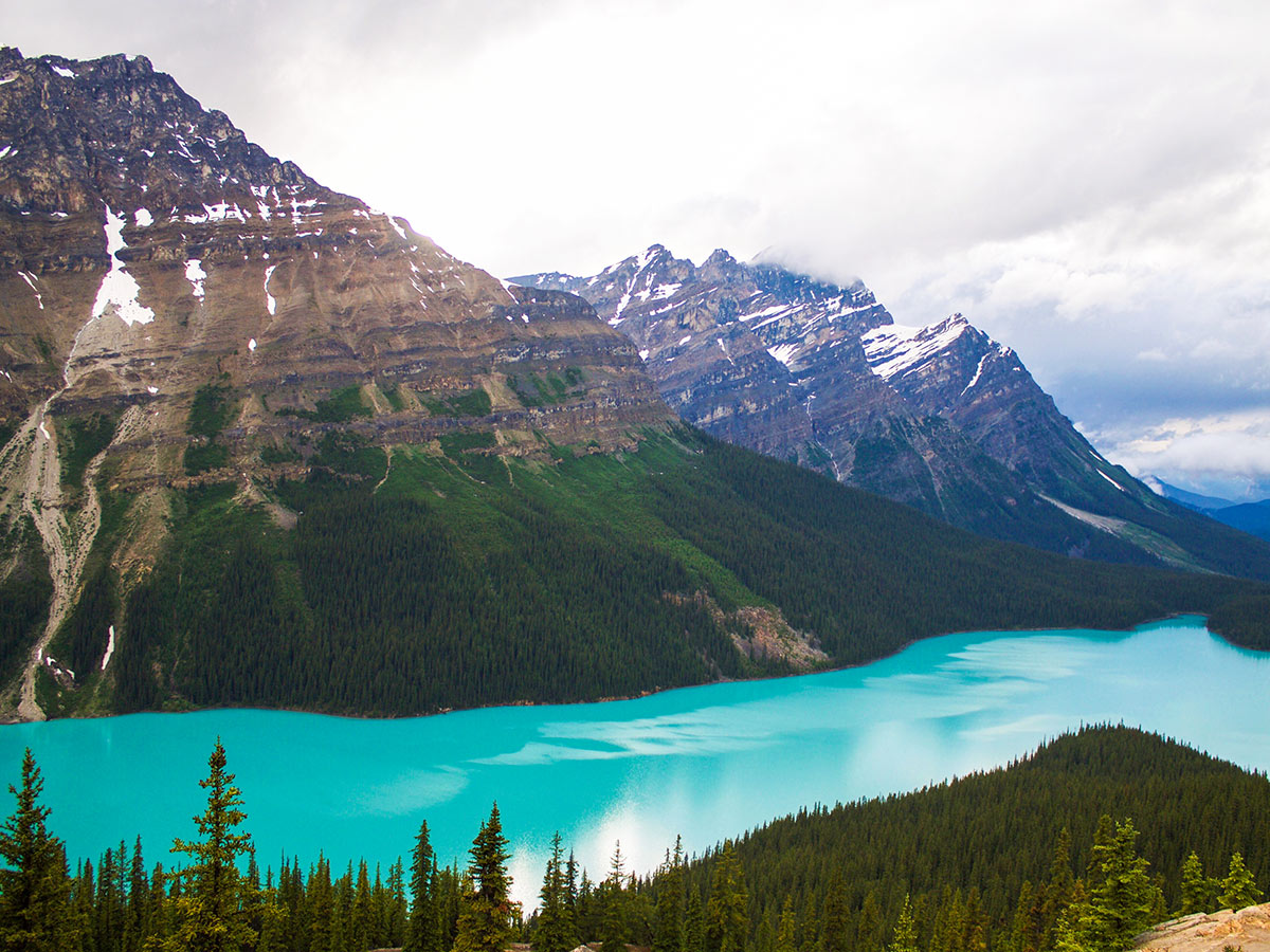 Looking at Peyto Lake on a guided Rocky Mountain Camping Tour in Canada