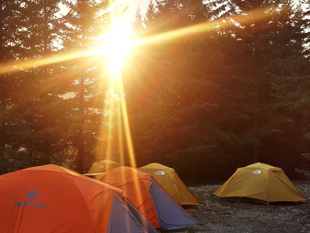 Setting a campsite on a guided tour in Vancouver Island