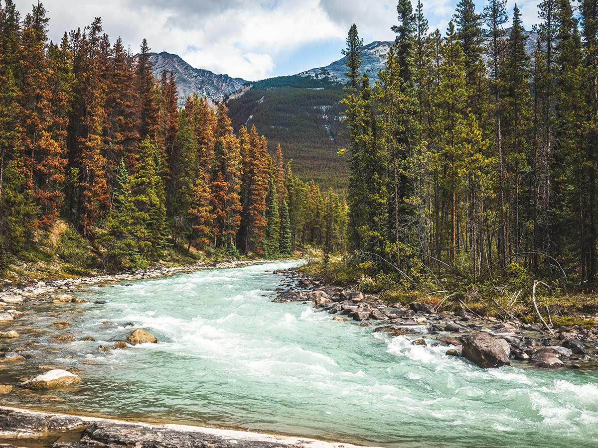 Beauitful energetic river in the Jasper National Park