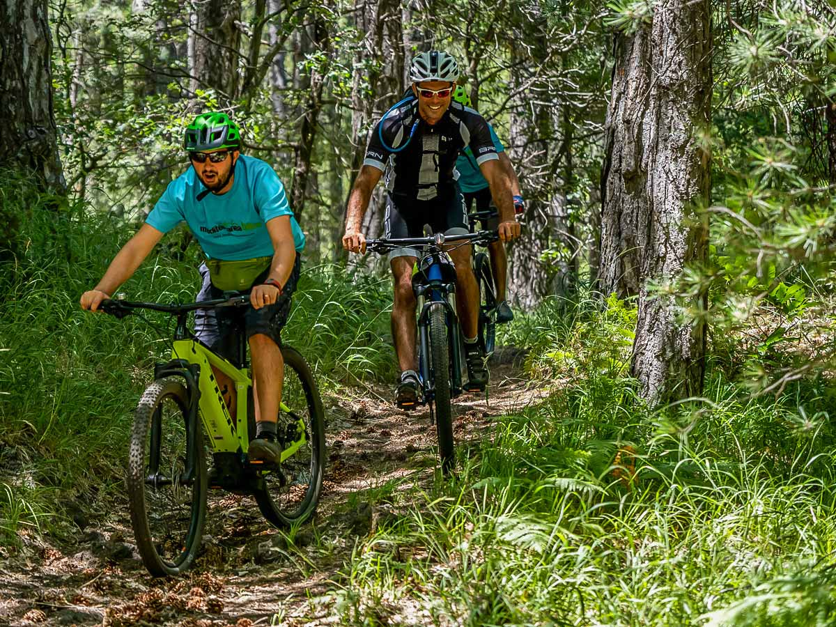 Group of mountain bikers in the lush green forest in Sicily