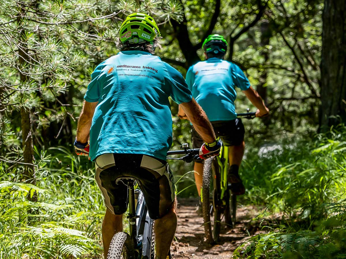 Group of bikers riding in the lush forests of Sicily on a Biking in Sicily tour