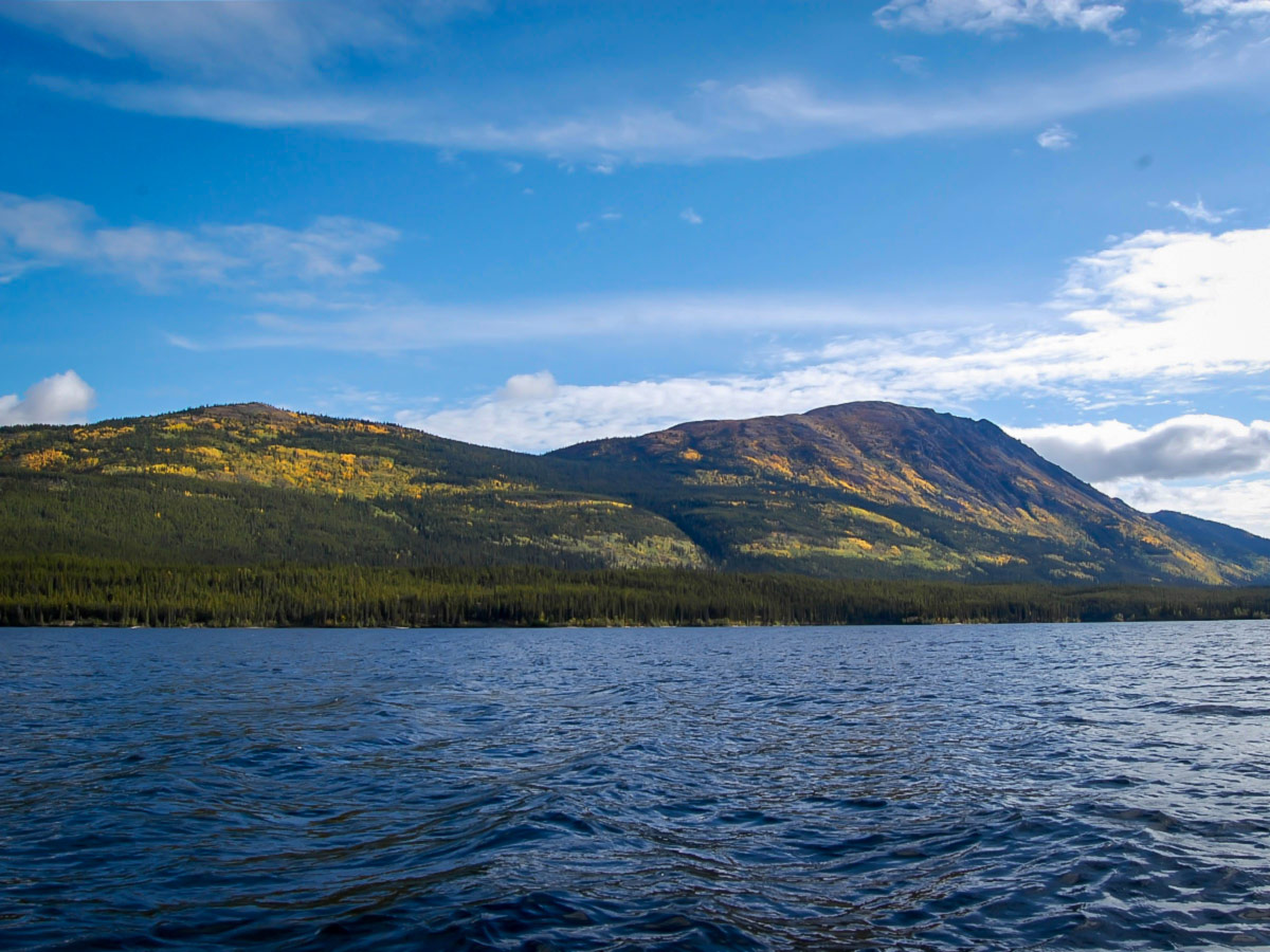 Guided Canoeing Tour on Big Salmon River, Yukon, Canada