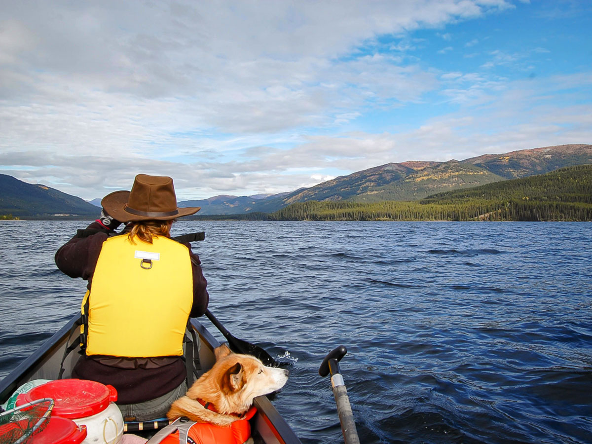 Canoeing on Big Salmon River in Yukon is a very rewarding experience