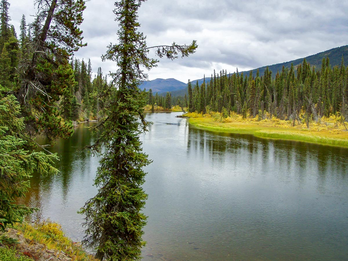Views from canoeing on Big Salmon River in Yukon tour with a guide