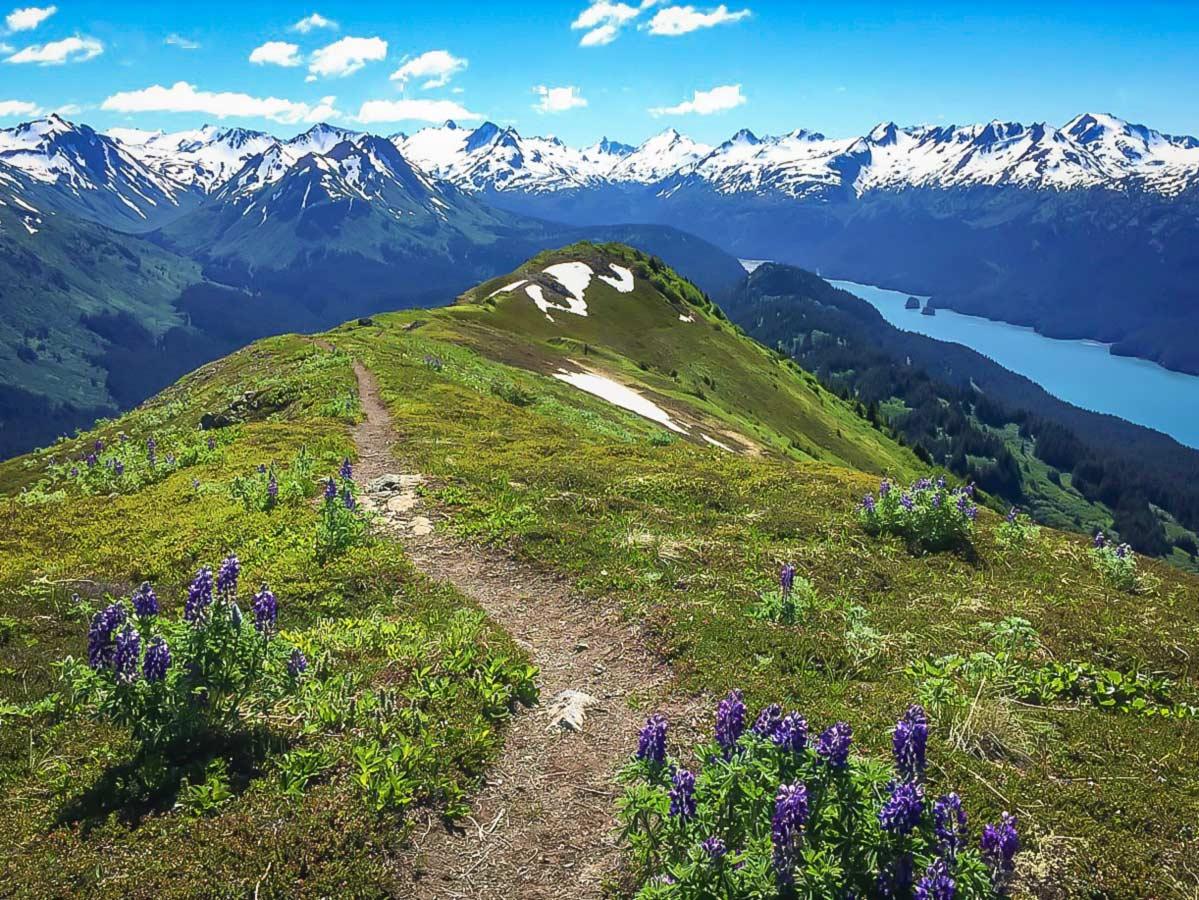 Walking on the ridge in the Kenai Peninsula in Alaska