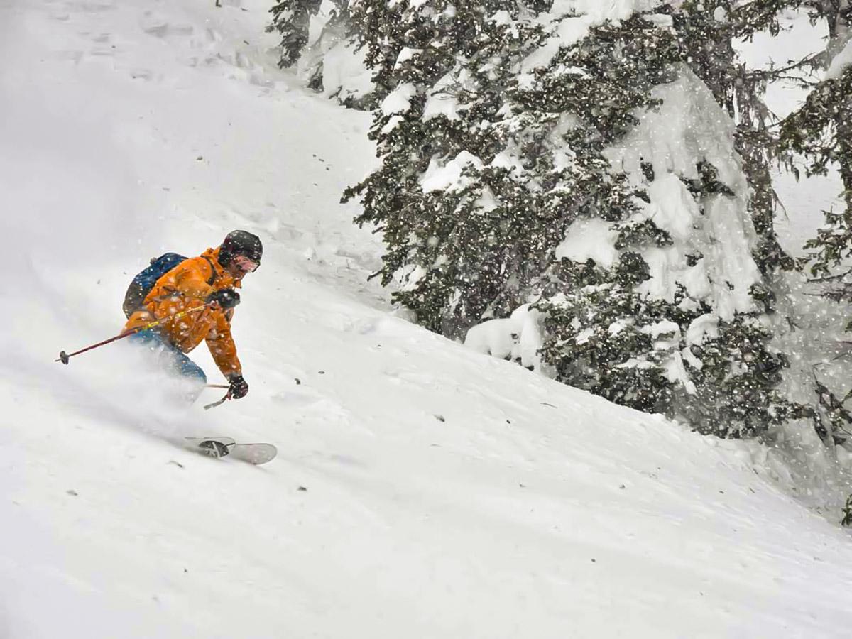 Skiing down on powdery snow (British Columbia, Canada)