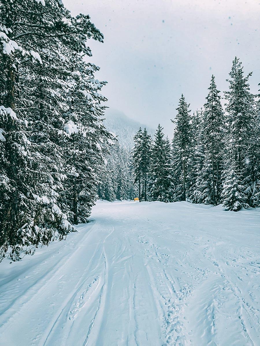 Wide snowy trails near Bansko seen on Ski Adventure in Bulgarias Mountains