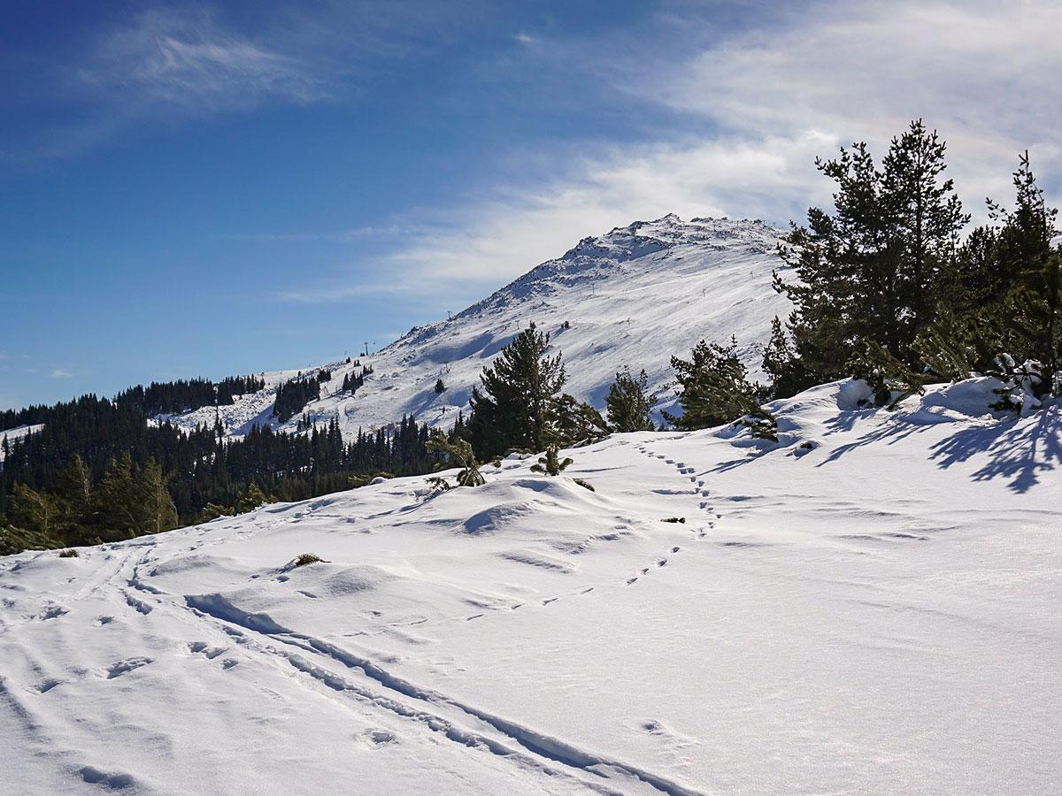 Stock image od skiing in Bulgaria