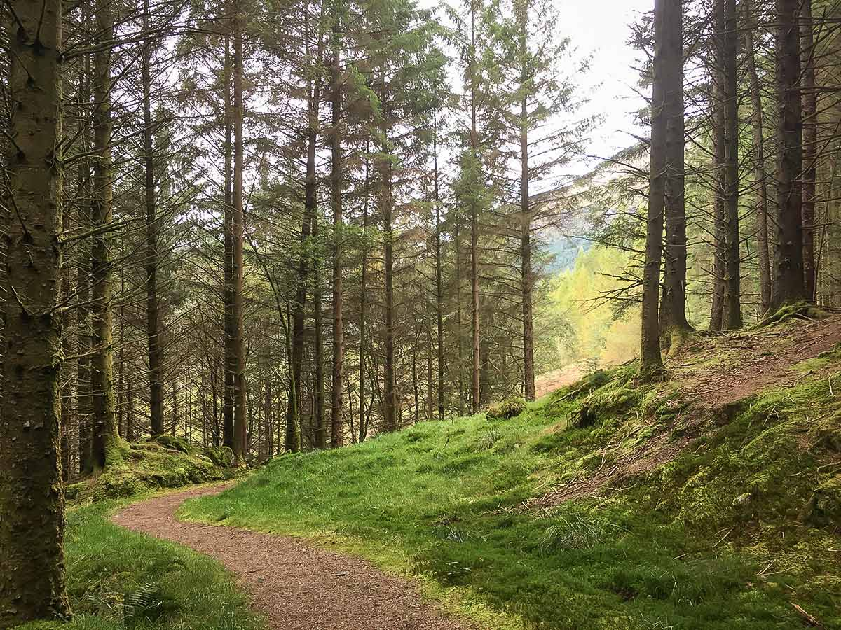 Kyles of Bute along the Cowal Walk in Scotland