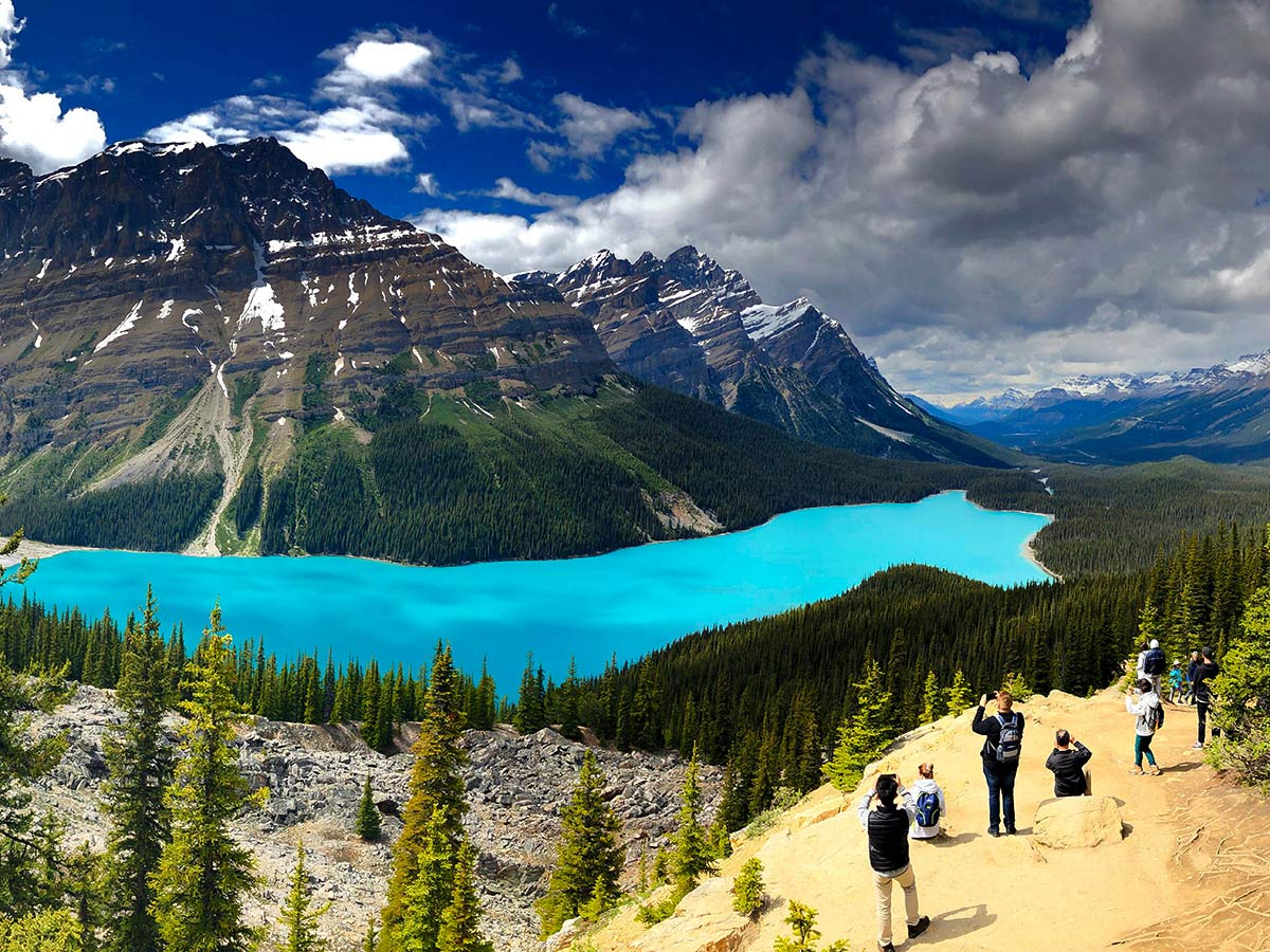 Panoramic views of the Peyto Lake, seen on a guided hiking tour to the Canadian Rockies