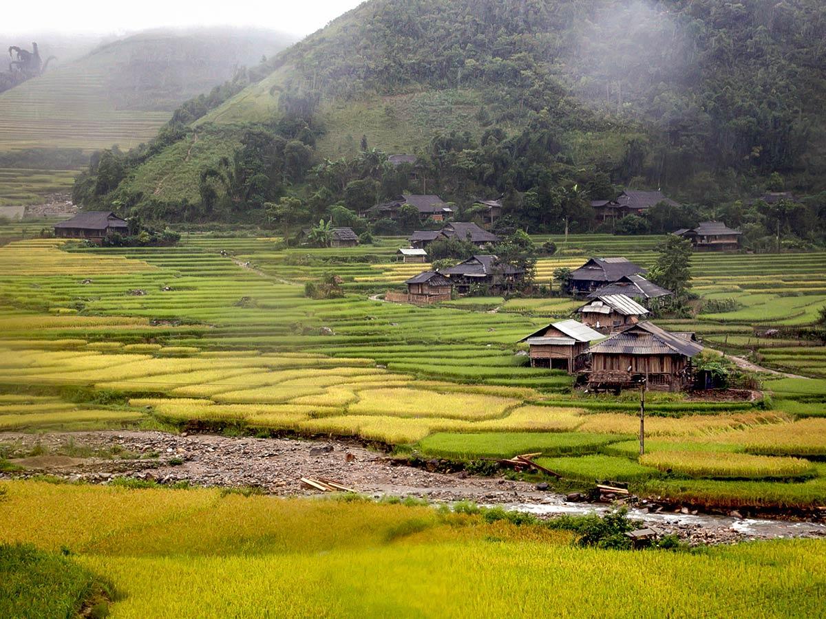 Rice field in Mai Chau seen on Vietnam Active Adventure Tour