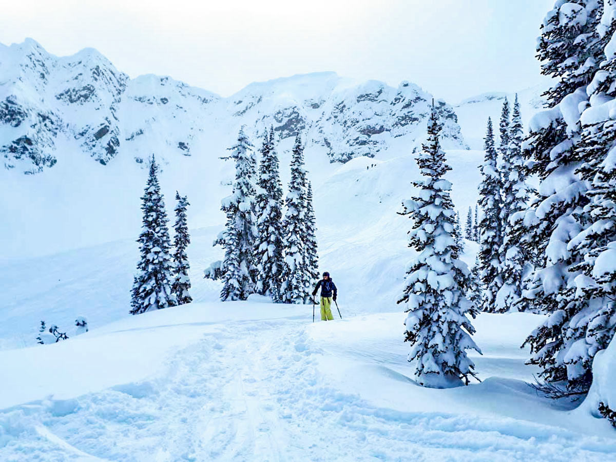 Great slopes in British Columbia on a guided skiing trip