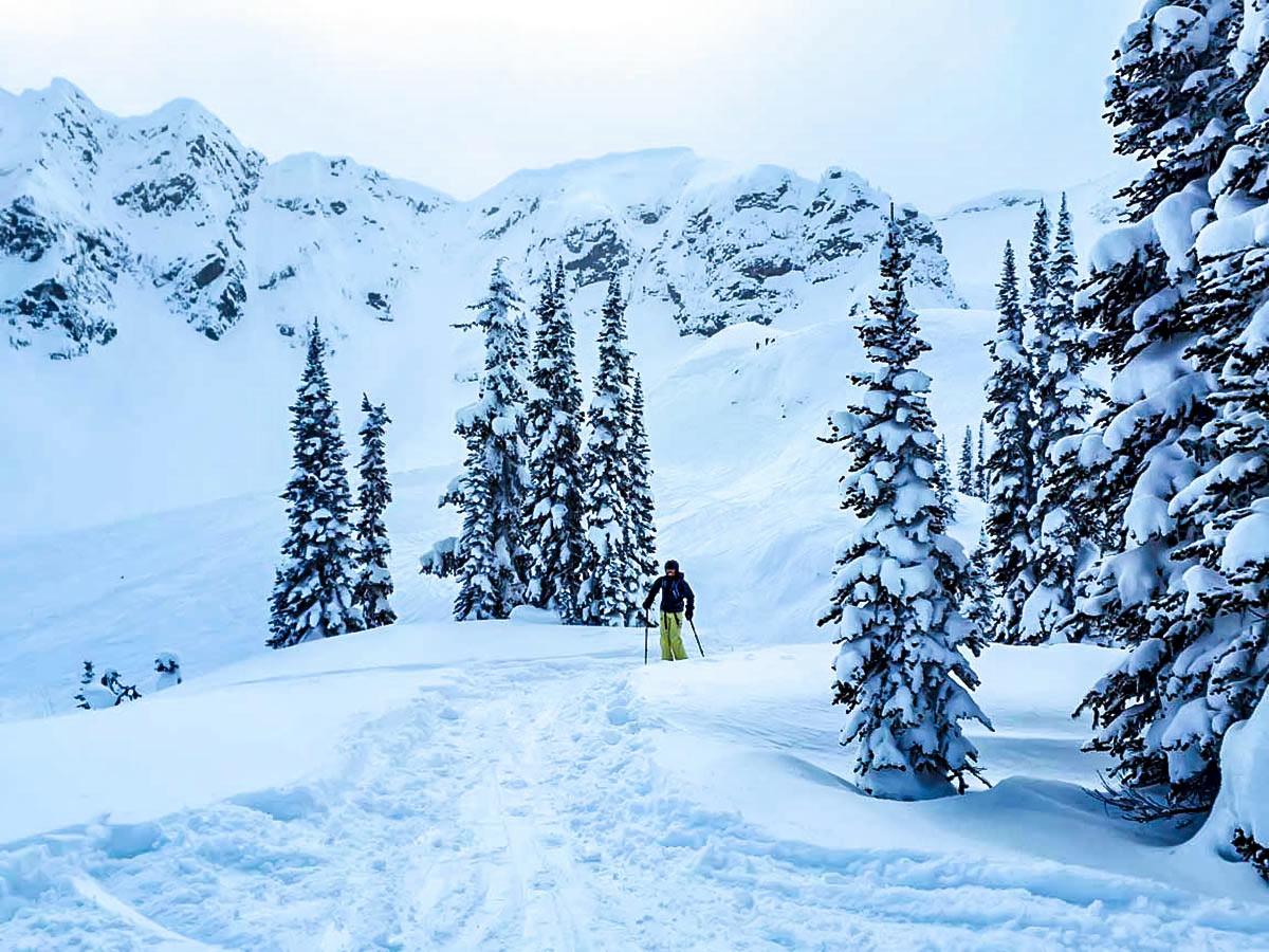 Powedery snow on Rocky Mountain ski trip around Banff Lake Louise Golden and Fernie