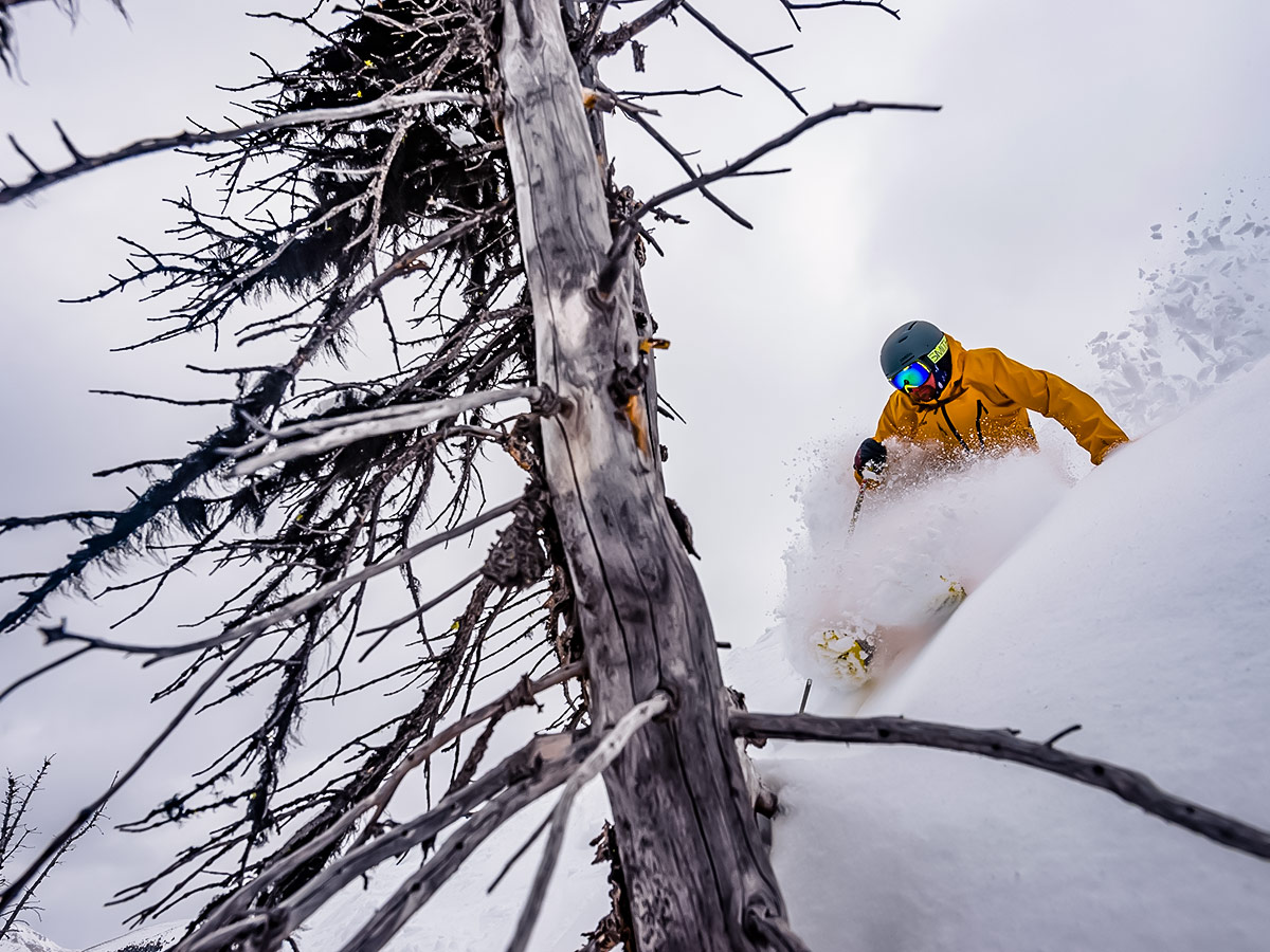 Backcountry skiing with a guided group along the Powder Highway