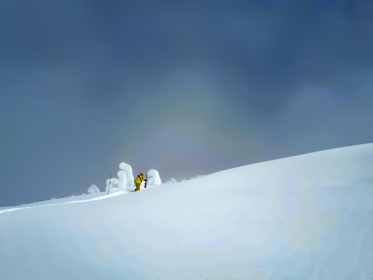 Expansive snowy slopes on ski tour in the Canadian Rocky Mountains