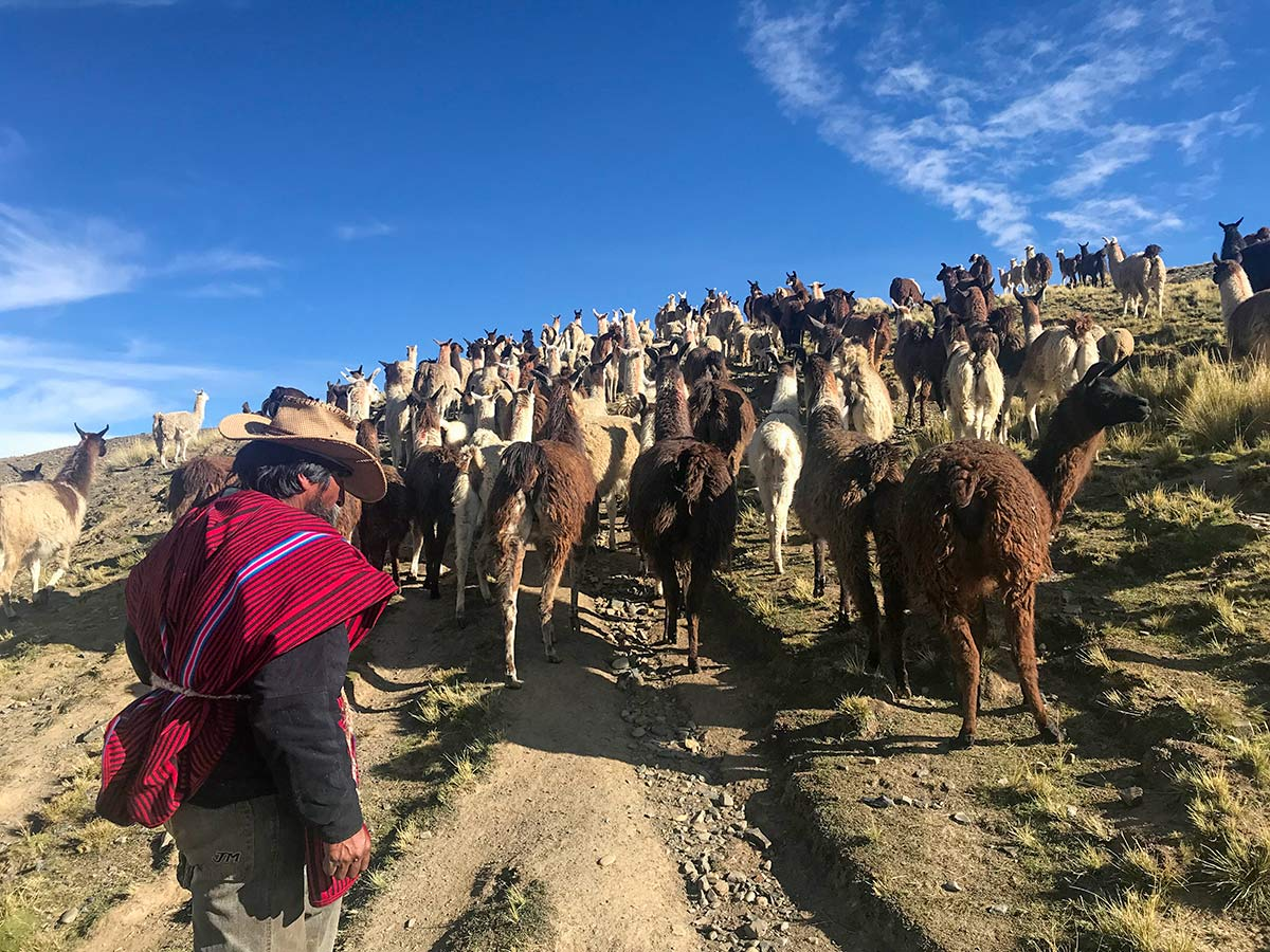 Cultural experience with locals in Tuni Bolivia