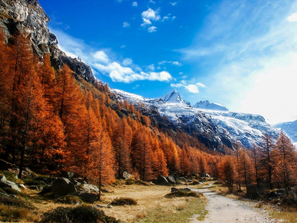 Gran Paradiso views in Autumn