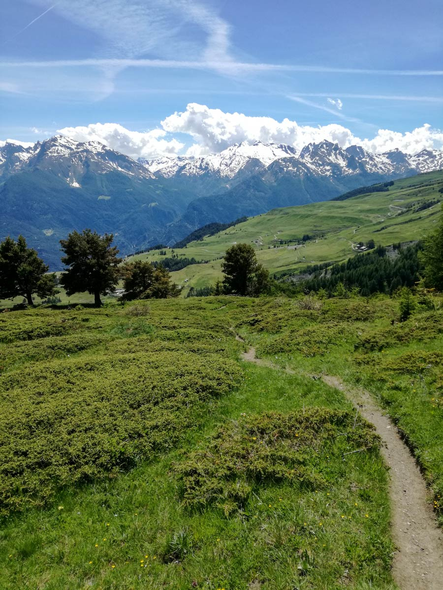 Beautiful trail in the mountains Self guided Aosta Valley Hiking Tour Italy