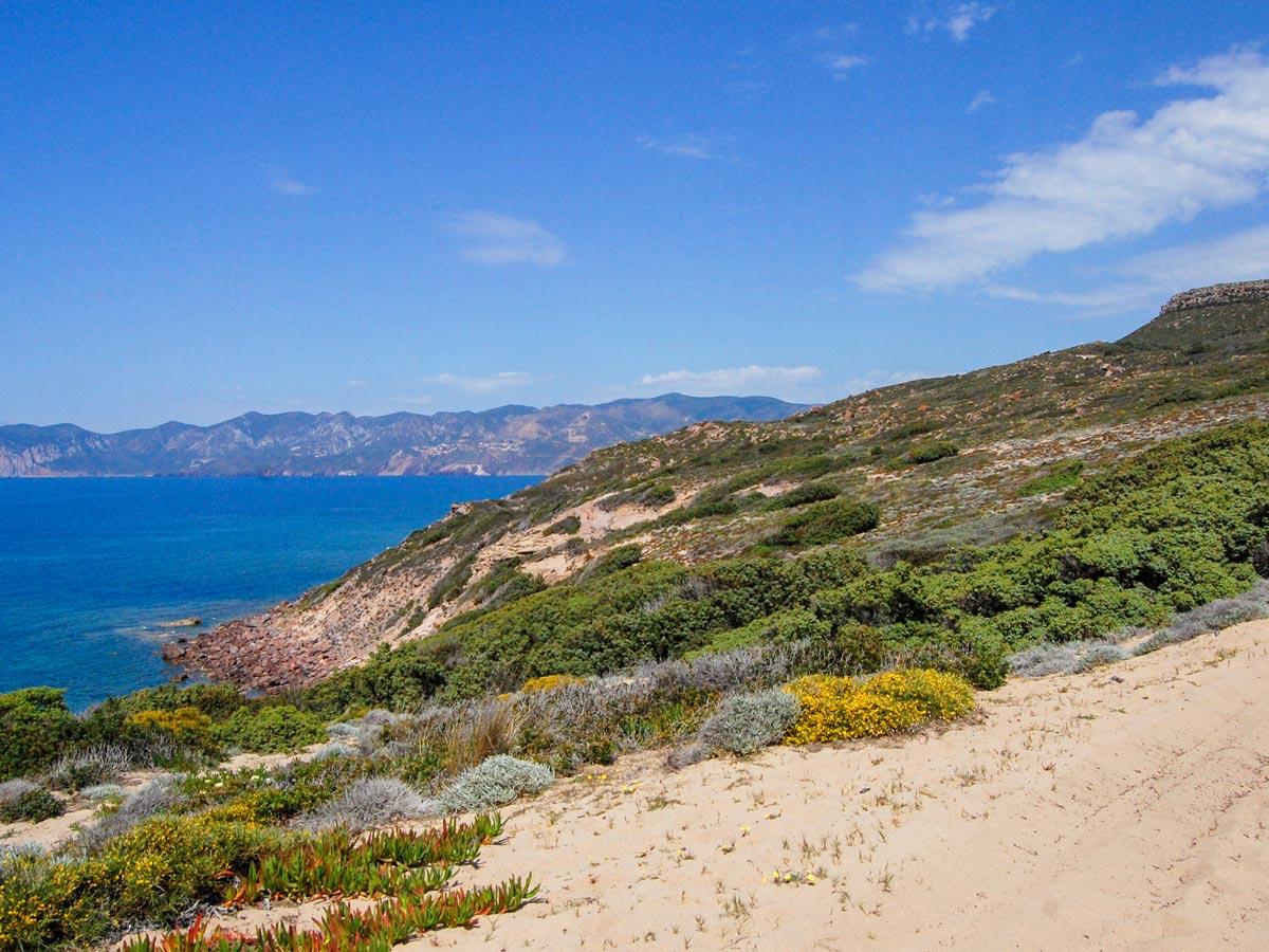 Walking the sandy path along the Sardinia Coast Italy