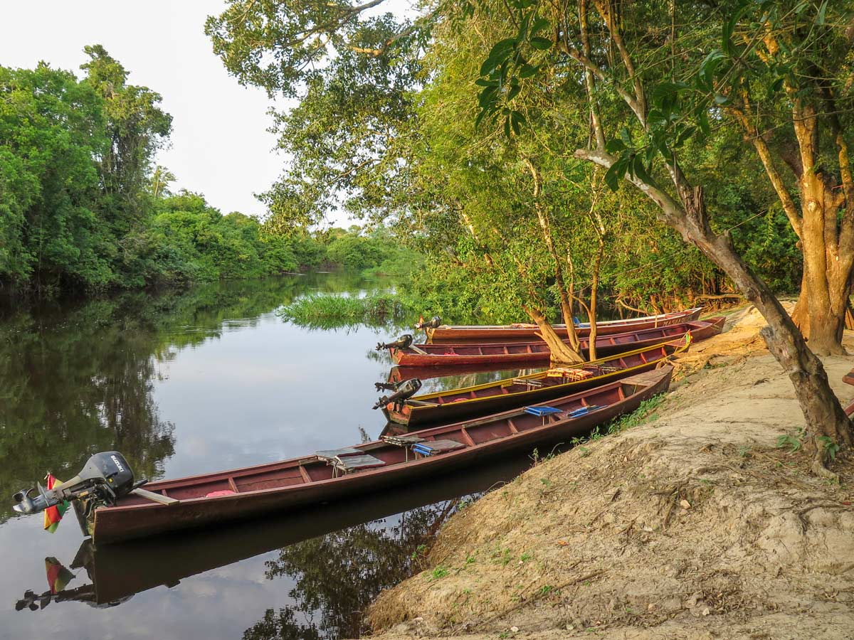 Boats in Yacuma River Bolivia