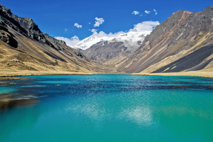 Real Cordillera