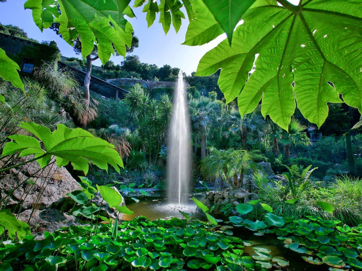 La Mortella Waterfalls in Ischia