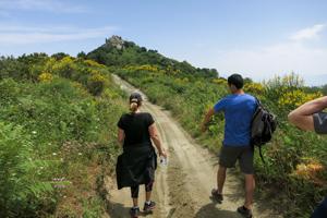Campania peaks