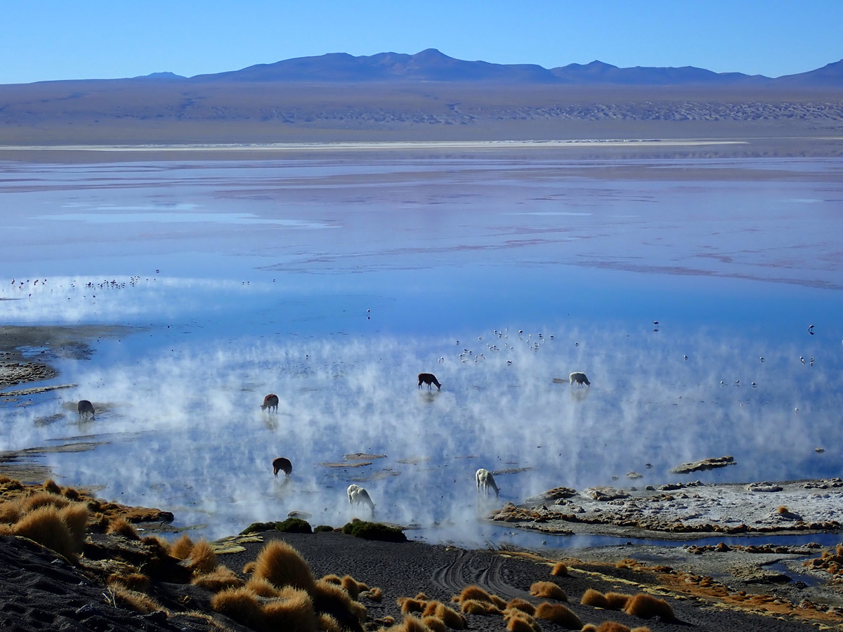 Fog on the lake on Bolivia Adventure Tour