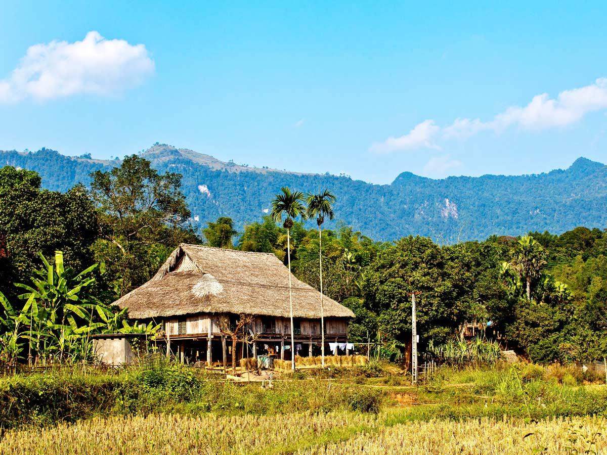 Beautiful views seen around Red Rivers Delta in Vietnam