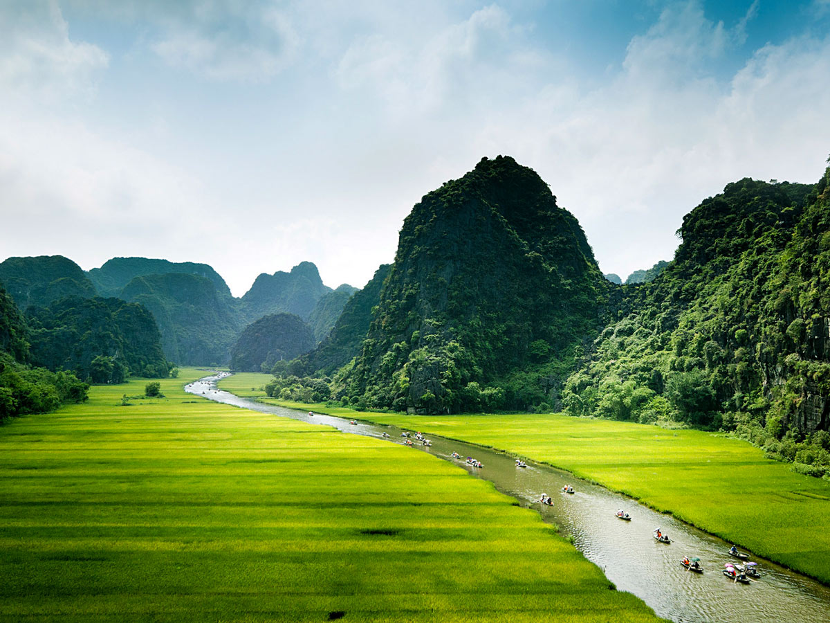 Rice field and river Ninh Binh seen on guided biking tour in Vietnam