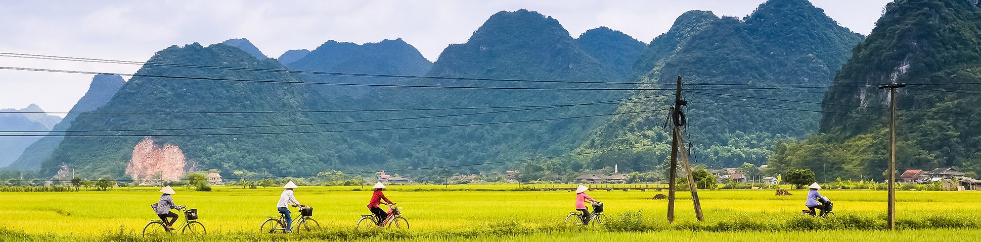 Cycle along Red River Delta