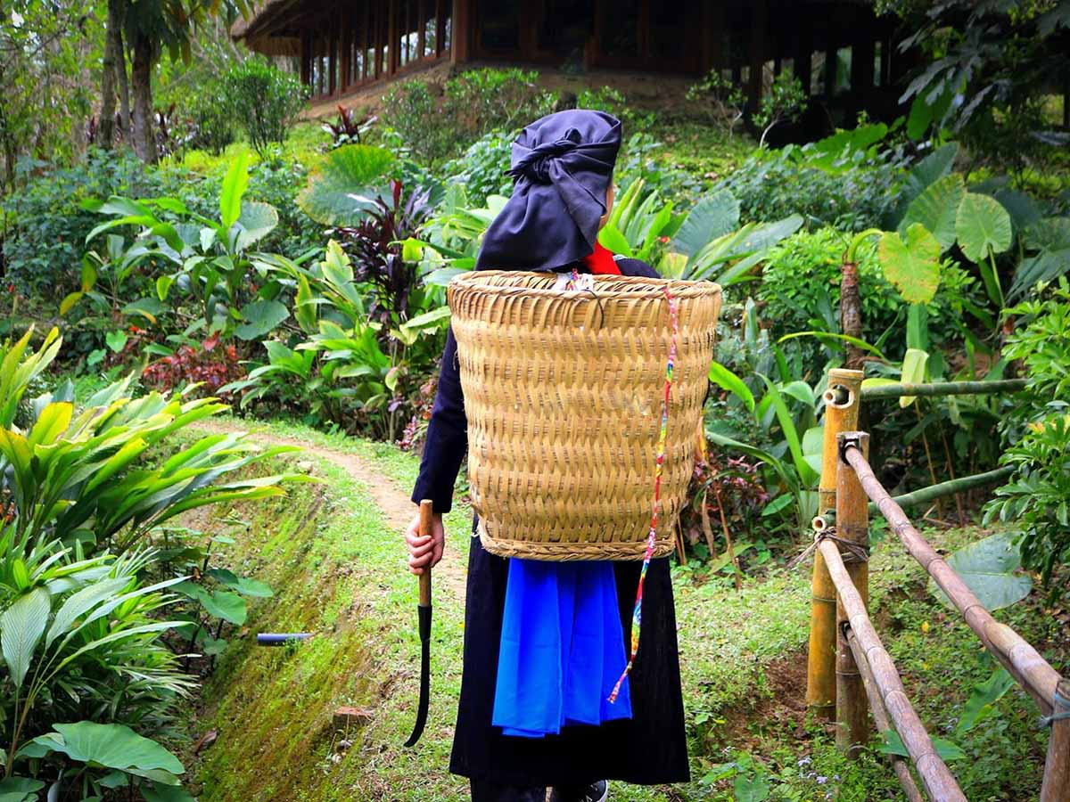 Local in Northern Vietnam