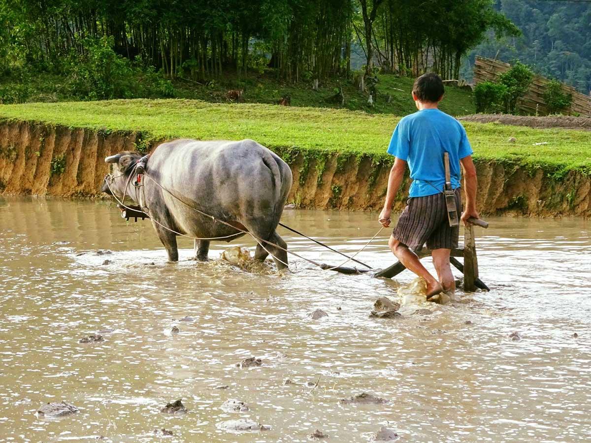 Locals met while on Northern Vietnam Hiking Tour