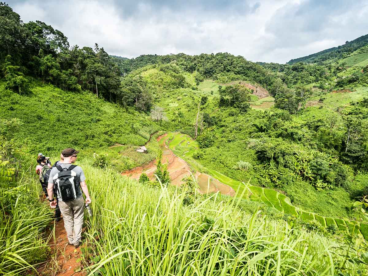 Hiking in the terraces of Chiang Mai