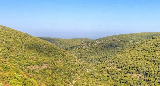 Israel Sea to Sea Hiking Tour