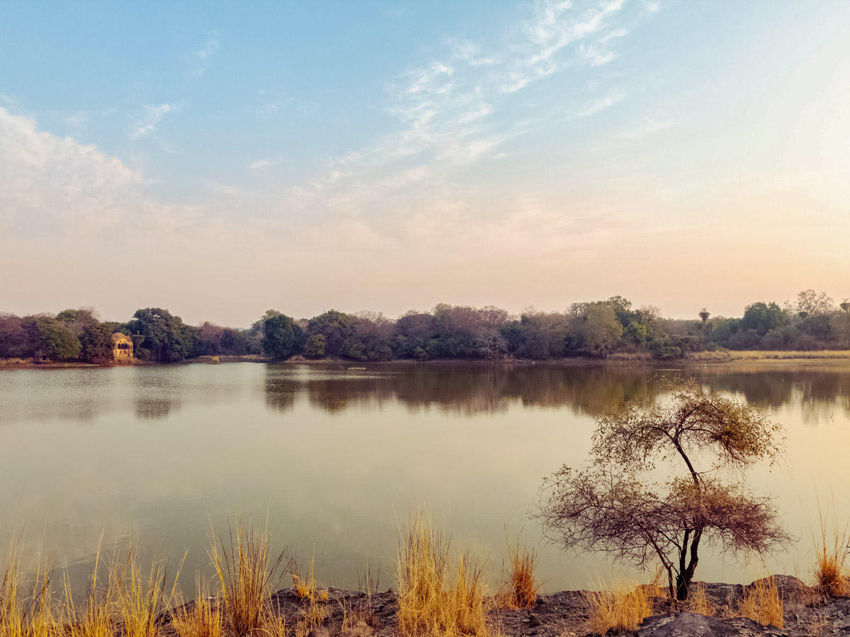 Beautiful calm river peaceful grasslands seen along wildlife and culture tour in India