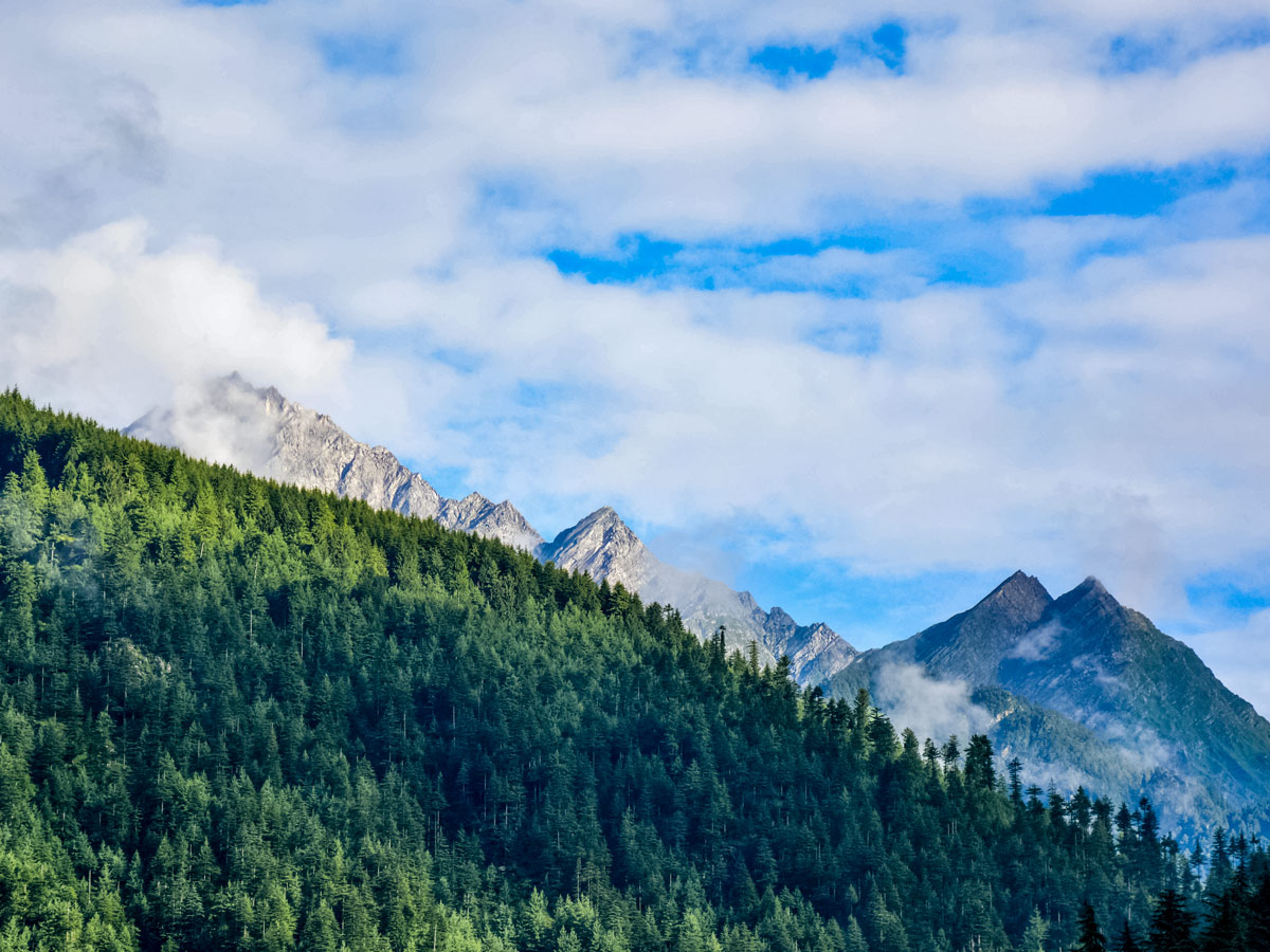 Forest and stunning Himalayan mountain peaks seen along safari tour in India