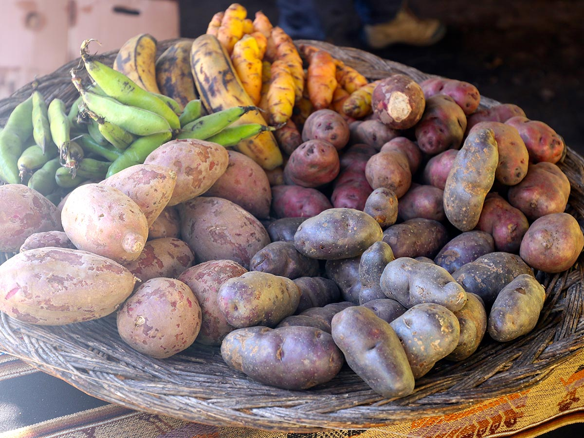 Potatoes, beans and plantains