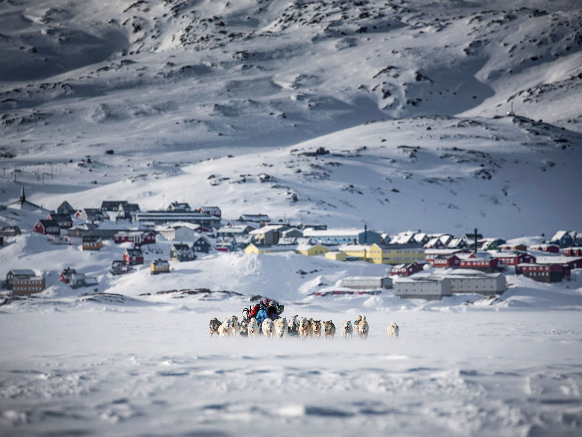Dog Sledding tour group departing from village in Greenland