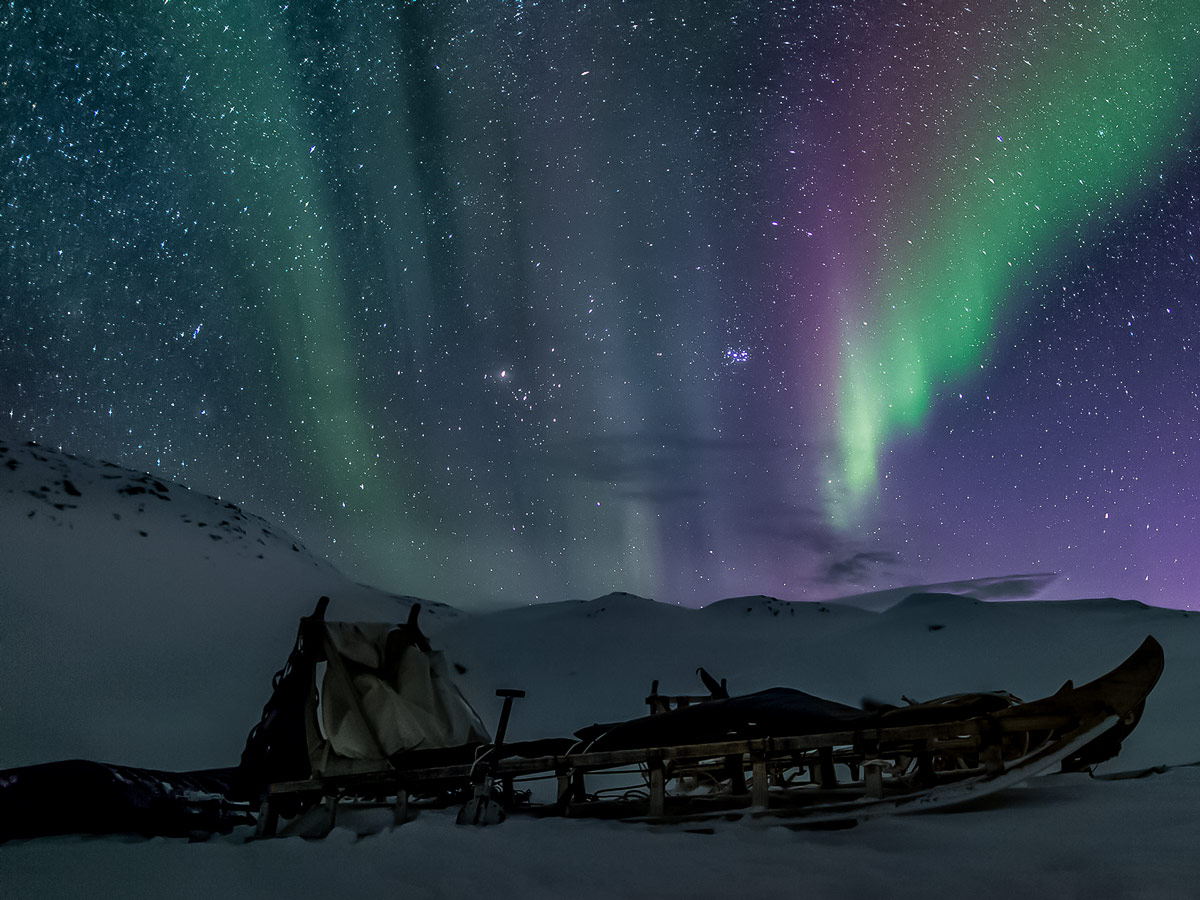Beautiful Northern Lights Aurora Borealis along Dog Sledding adventure tour Greenland