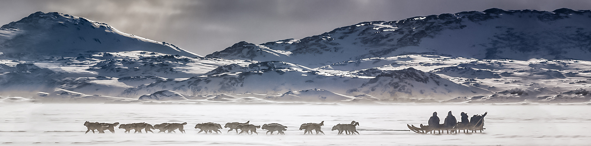 Dog Sledding in East Greenland Tour