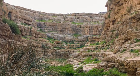 Jericho to Jerusalem through Wadi Qelt Tour