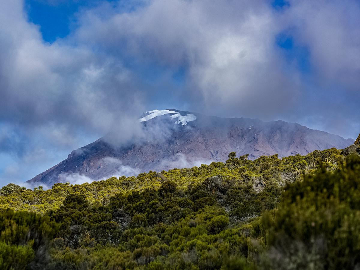 Kilimanjaro Tanzania Maranhu hiking trail featuring mountain peak jungle views