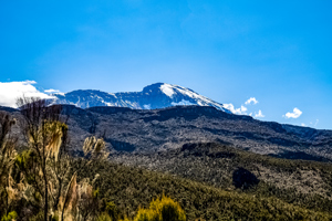 5-day Mount Kilimanjaro on Marangu Route