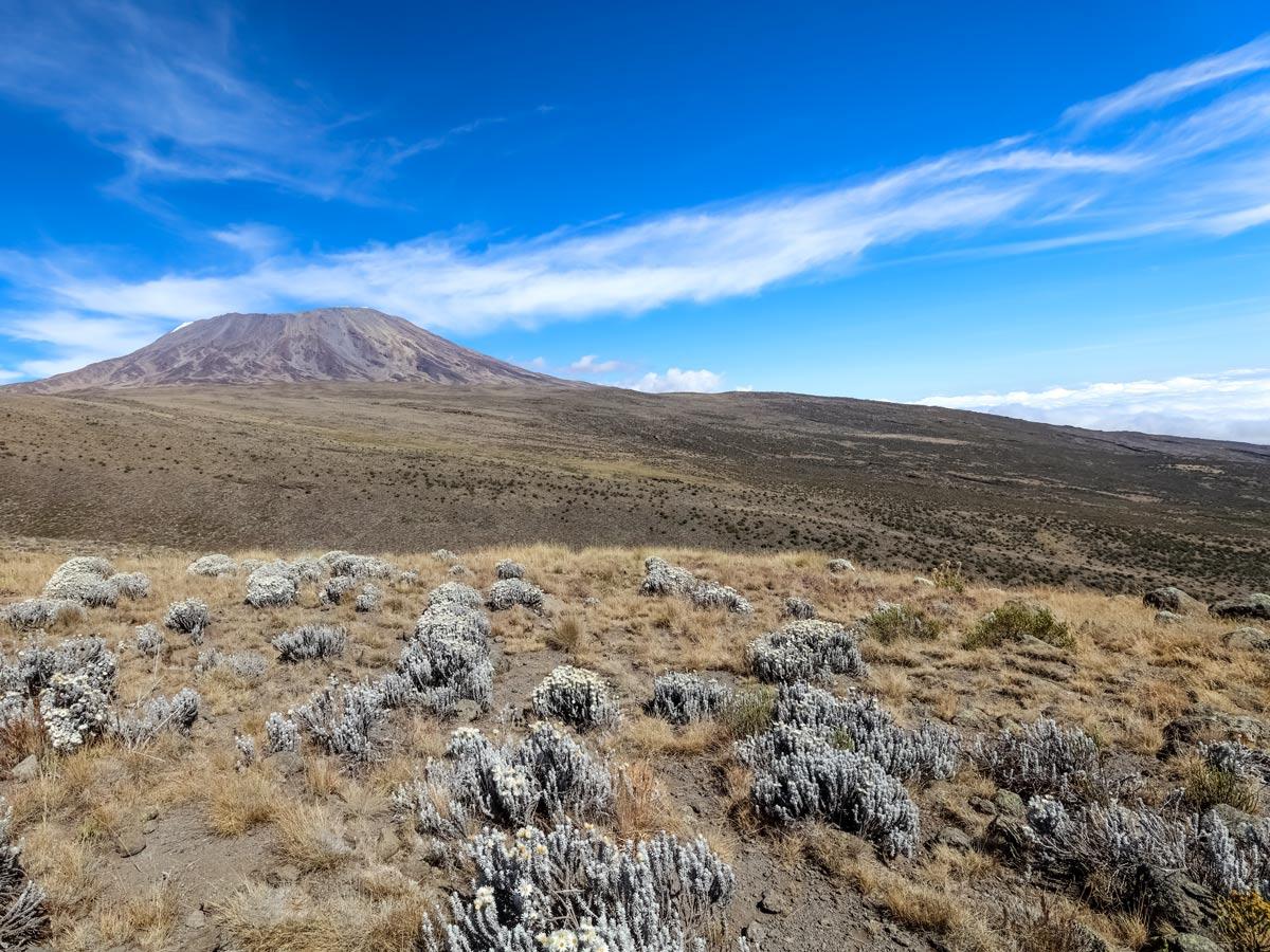 Hiking Mount Kilimanjaro Tanzania Rongai route adventure tour