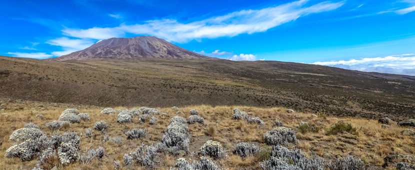 7-Day Mount Kilimanjaro on Rongai Route